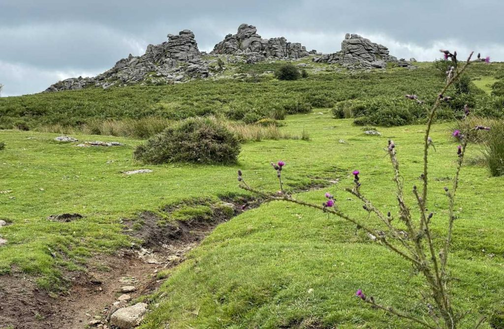 Vision Quest Dartmoor Tor